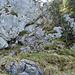 Weiter geht es zum Kamin. In Originalgrösse sieht man das Drahtseil und einige Bügel. An einer Stelle glänzt das Drahtseil in der Sonne.