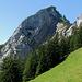 """Von der Egg aus traversiert man hier auf dem """"Kuhweg"""" Richtung Wald bis unter die Felswand der Hochflue."""