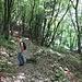 Sui resti di una vecchia frana è ormai ricresciuto il bosco.