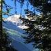 Aufstieg im Wald, die hübsche Bergkette kurz erblickt