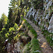 Im Abstieg  Richtung Ochsenboden.