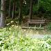 (75) Standort: Mangfallgebirge, am Schwarzenberg. Diese Bank ist mir beim beim Hochlaufen gar nicht aufgefallen, dabei hat sie eindeutig von allen drei heute entdeckten Bänken die herrlichste schlechte Aussicht. BANK 26 von: [u shanB]