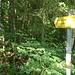 Bei diesem Schild geht's rauf in den Bergwald