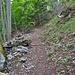 Hier bei diesem flachen Stein geht es rechts zurück auf den Mastenweg.