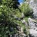Im Abstieg vom Col d'Oberberg.