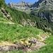 Un cartello metallico segnala il confine inferiore dell'Alpe di Mügaia.