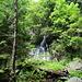 auf ca. 1140 m erreicht man den Wasserfall