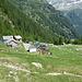 Alpe Pozzo