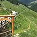 Eingang zur Alpe Rasdeglia - im Hintergrund sieht man schon die Kühe, welche samt Kälbchen mitten auf dem Weg standen. Das grossräumige Umgehen weiter höher am Hang war ziemlich mühsam.