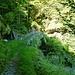 Am Aufstieg zur Capanna Alzasca - die Steinbrücke im romanischen Stil über die Soladina