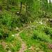 Unterwegs nach Naigarom im Valle di Lodano.