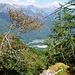 Von der Alpe di Tramossa gehts hier runter auf das durch die Bäume sichtbare Plateau