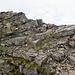 Kurz vor der kleinen Schlüsselstelle zwischen Astelhorn und Wandelen. Des Kletterers (Alb-)traum :-)