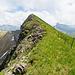 Gemütlicher Aufstieg zum Heitlistock (Panoramaaufnahme)