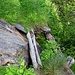 Auf einem alten Weg entlang der Valsorey