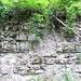 Felsschichten aus der Vor-Hikr-Zeit, genau genommen vom Jurameer in der Zeit  vor 144 Mio Jahren und früher...