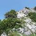 Die kurze Klettersteigeinlage am Kleinen Traunstein