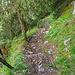 Ab Stepfen wird es nochmals steil und wild. Die Sicherungen haben wohl auch schon bessere Zeiten gesehen.