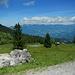 Bei diesem Stein mündet der Wiesenpfad in den Fahrweg.<br />Am Horizont der Walserkamm