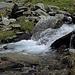 frisches Wasser  aus dem Brändji-Bach:  Sauerstoff-gesättigt und teilweise  eisgekühlt.