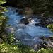 auf dem schattigen Talweg  entlang der viel Wasser führenden Turtmänna