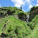 In vista dell'Alpe Fumegna, accolti dallo scampanio dei sonagli delle sue vacche alpiniste.