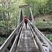 Il ponte in legno al termine della Val Cornavosa.