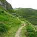der Weg nimmt kein Ende, hinter jeder Kurve hoffe ich, der Oberalppass käme in Sicht. Aber es dauert.