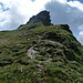 arrivati in cresta saliamo ancora attaccando la cima sulla sinistra (che è più semplice che davanti)