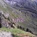 Unter den Felsen in der Bildmitte ging es dann weiter.