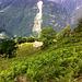 Monti di Maruso