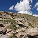 Etwa 150hm unter dem Gipfel. Steile, schrofige Abschnitte wechseln mit gutmütigem Gehgelände.