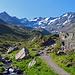 nun geht es zwischen vielen Alpenrosen auf diesem Weg zur Chamanna da Grialetsch – SAC Grialetschhütte (2545 m)