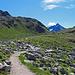 auf diesem Weg geht es zur Chamanna da Grialetsch – SAC Grialetschhütte (2545 m)