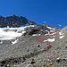 durch diese Gerölllandschaft geht es hinauf zum Gletscher, ich bin am Anfang immer rechts vom Gletscherbach gelaufen.