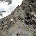 ... eine richtige steile Schutthalde mit Felsbrocken dazwischen.