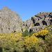 Im Aufstieg vom Covão d'Ametade zum Cântaro Gordo - Die Schwemmebene liegt hinter uns, von nun an geht's durch wunderschönes, aber auch ziemlich wildes Gelände aus Fels und dichtem Gebüsch.