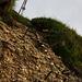 Klettersteig ähnliche Verhältnisse :-)
