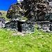 Anche la timida mula dal suo rifugio ci saluta