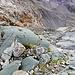 Formazioni e colorazioni di rocce, stupende