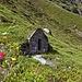 Interessante Hütte am Wegrand