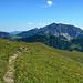 Über blühende Bergwiesen nähert man sich dem Goldlochspitz.<br />