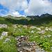 Am Beginn der Alpa Vera<br />Dahinter die Tagesziele Verakopf und Rossberg