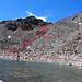 meine Route zum Bergsee, Detail Nr. 1, siehe Bild53 [http://www.hikr.org/gallery/photo2419767.html?post_id=122687#1 Bild53]