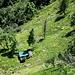 dalla cresta tra Poncino della Croce e Poncione del Macello : zoom sul Rifugio Cortaccio ?