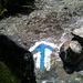 Le sentier bleu-blanc depuis Mittlätsch en direction de Schittertellti.