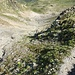 Abstieg bis ca. 2250m