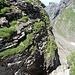 Auf der drüberen Seite geht es dann wieder hinauf, weniger hoch, weniger schwer, zu einem deutlich erkennbaren Weglein in der Nordostflanke der Abgelösten Gauschla (auf dem untersten Grasband).