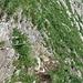 Vom Gipfel des Fläschenspitzes kommend peilt man den gut sichtbaren Pfosten an und folgt der deutlichen Wegspur, die zu dieser seilbesicherten Passage führt. Anschliessend kann man die Schrofen mehr oder weniger die Höhe haltend traversieren und gelangt wieder auf den Grat.