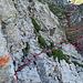 jetzt bin ich bei der Schlüsselstelle von der Chammhaldenroute, die heikle Querung dieser Felswand, das relativ neu angebrachte Stahlseil ist meiner Meinung  zu tief angebracht und baumelt nur noch so vor sich hin, es ist eher hinderlich als es nützt, ich jedenfalls habe es nicht angefasst.
